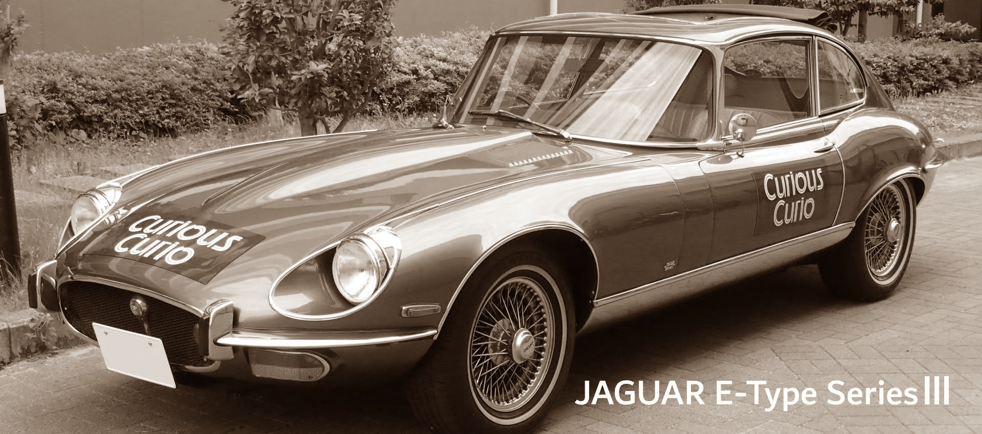22HP-Jaguar
